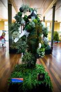 Angus McCormack's winning design on display at the Melbourne International Flower & Garden Show.