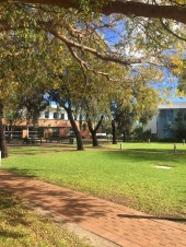 Winter sunshine on campus