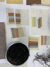 Natural Dye Workshop with Dani Andree